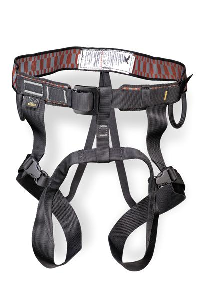 Harness Salewa Easy Fit Ii for 31€